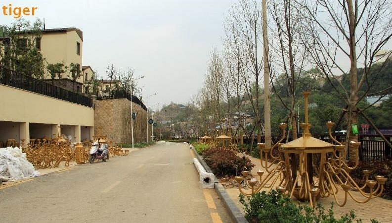 滨河路开始安装景观路灯图片