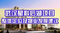 武汉星科后湖项目整体定位及物业发展