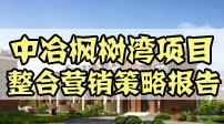 中冶枫树湾项目整合营销策略报告