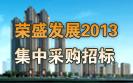 荣盛2013年集中采购