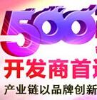2015年500强