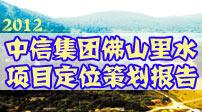 2012中信集团佛山里水项目定位策划