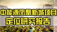 中能源凤凰新城项目定位研究报告